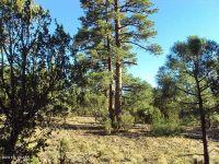 Home for sale: 2968 Tamarask Trail, Heber, AZ 85928