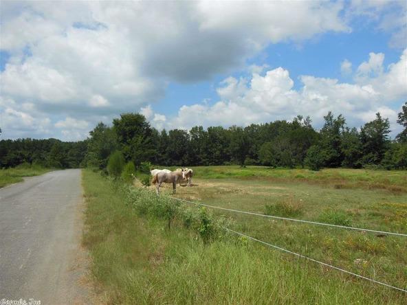 750 Saddle Brook Cir., Austin, AR 72007 Photo 9