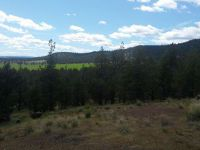 Home for sale: Lot 2 Buggy Trace, Alturas, CA 96101