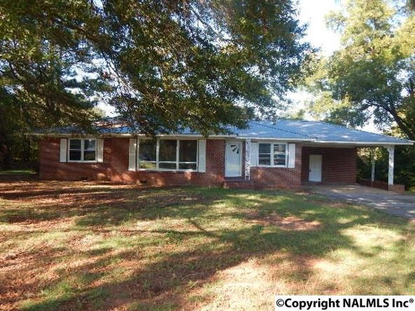 165 Chambers St., Leesburg, AL 35983 Photo 1