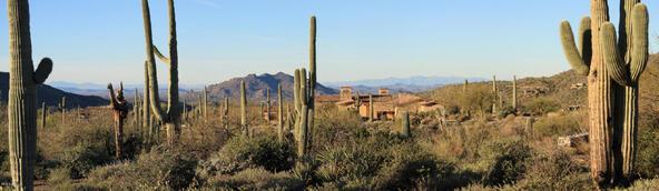 41927 N. Saguaro Forest Dr., Scottsdale, AZ 85262 Photo 7