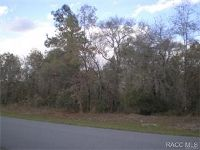Home for sale: 6964 Fountainhead Dr., Citrus Springs, FL 34434