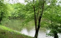 Home for sale: Lot 8 Shallowford Ln., Hayesville, NC 28904