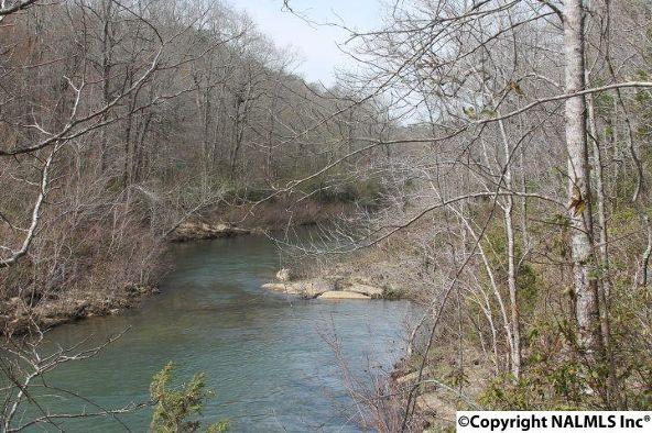 1020 County Rd. 628, Mentone, AL 35984 Photo 26