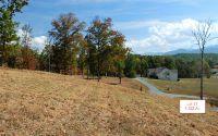 Home for sale: Lt11 Jack Groves Ln., Hayesville, NC 28904