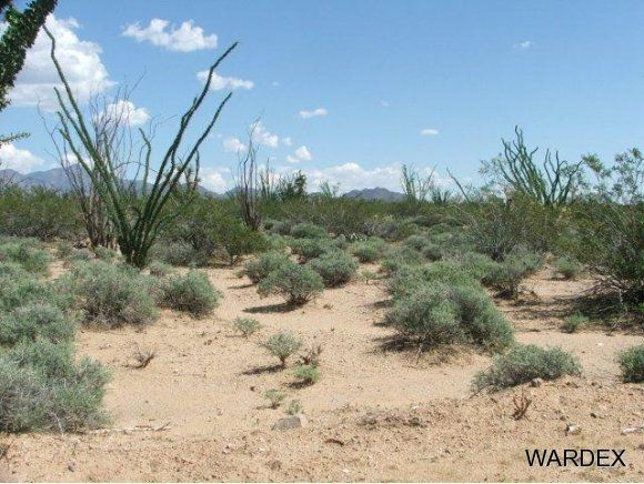 3181 Butch Cassidy Rd., Yucca, AZ 86438 Photo 16