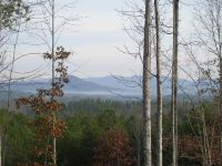 Home for sale: 185 Creek Stone Ct. Cks-Ph1-128, Six Mile, SC 29682