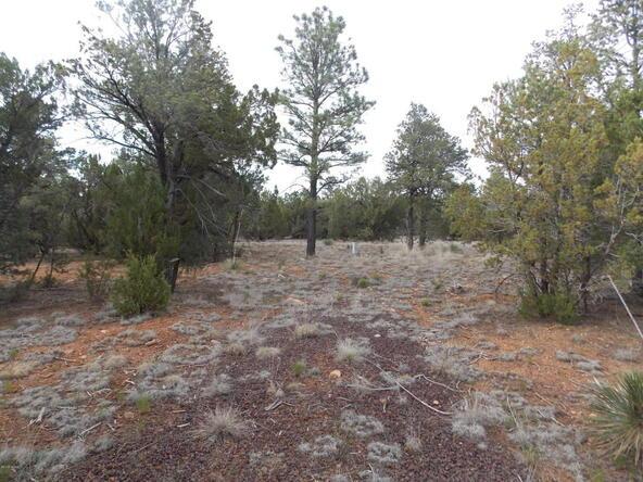 2961 Homestead Dr., Overgaard, AZ 85933 Photo 1
