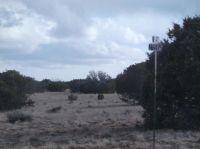 Home for sale: Lot 204 Elk Valley Ranch, Saint Johns, AZ 85936