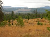 Home for sale: Nka 20 Acres Copperhead, Santa, ID 83866