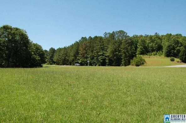 1.5 Acres Hwy. 431, Wedowee, AL 36278 Photo 4