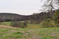 Home for sale: 5 Arno Allisona Rd., College Grove, TN 37064