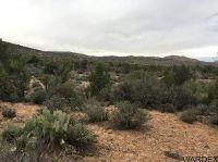 Home for sale: 11315 E. Rancho Mirada Ln., Hackberry, AZ 86411