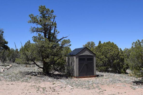487 Sierra Verde Ranch, Seligman, AZ 86337 Photo 18