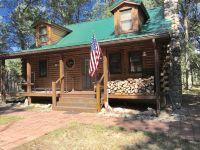 Home for sale: 12512 S. Star Lake Dr., Baldwin, MI 49304