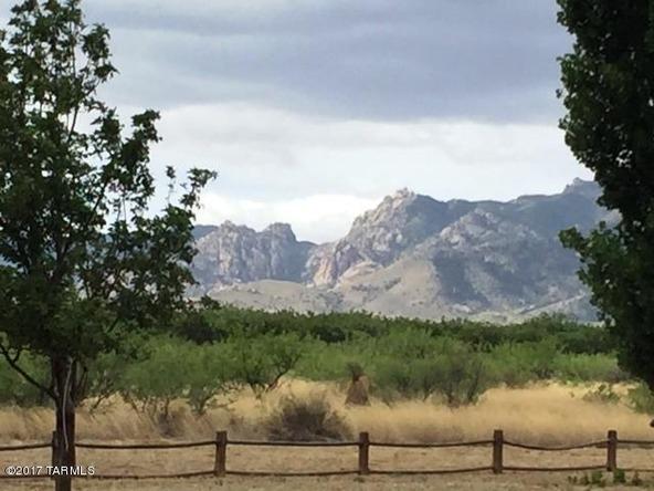 2253 N. Cochise Stronghold, Cochise, AZ 85606 Photo 60