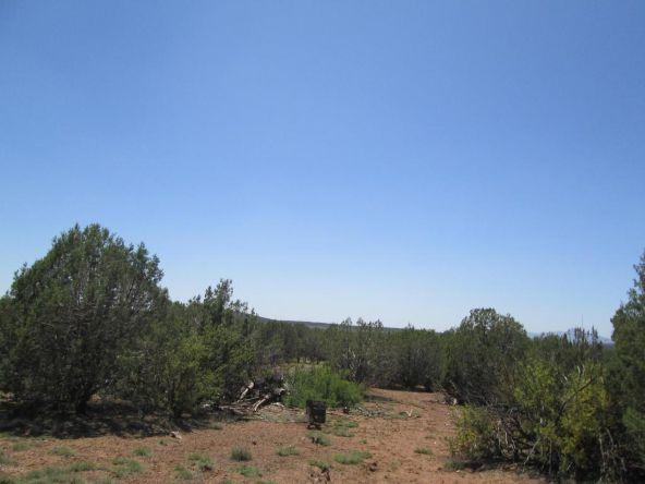3328 N. Hillside Rd., Ash Fork, AZ 86320 Photo 44