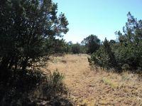 Home for sale: 18 Kiva Loop, Sandia Park, NM 87047