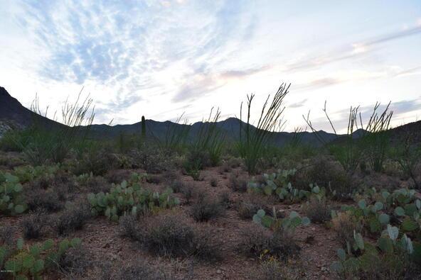 6tbd W. Sweetwater, Tucson, AZ 85745 Photo 22