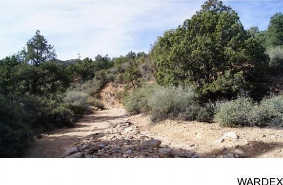 6731 N. Trap Springs Rd., Hackberry, AZ 86411 Photo 13