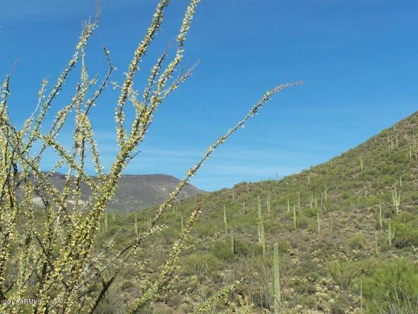 45043 N. Cottonwood Canyon Rd., Cave Creek, AZ 85331 Photo 9