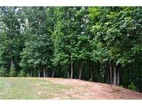Home for sale: 12541 Marsh Wren Ct., Charlotte, NC 28278