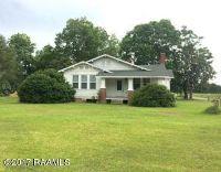 Home for sale: 5559 Hwy. 167, Opelousas, LA 70570