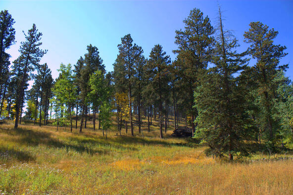 Lot 4, Outlaw Pass, Lead, SD 57754 Photo 11