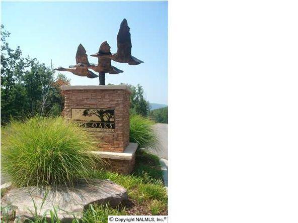 166 Lookout Mountain Dr., Scottsboro, AL 35769 Photo 2
