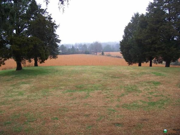 17171 Al Hwy. 35, Scottsboro, AL 35768 Photo 10