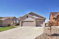 Home for sale: 10342 Capital Peak Way, Peyton, CO 80831