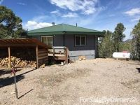 Home for sale: 20486 Rice Rd., Pioche, NV 89043