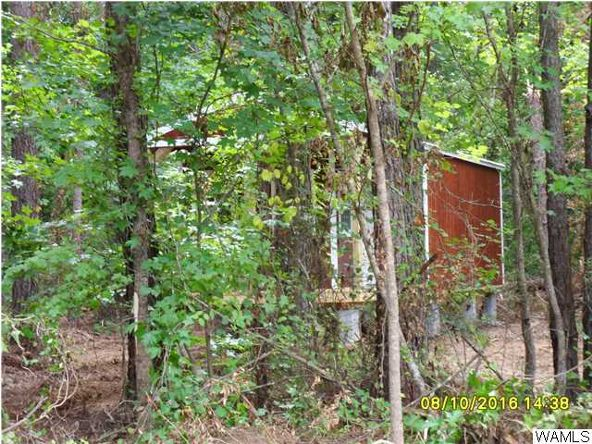 2 Lock 9 Rd., Fosters, AL 35463 Photo 3