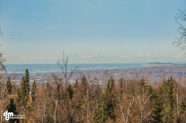 9720 Basher Dr., Anchorage, AK 99507 Photo 3