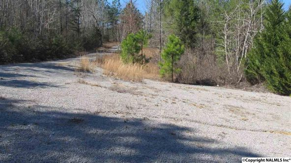 133 Cane Creek Overlook, Double Springs, AL 35553 Photo 29