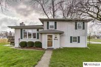 Home for sale: 310 6th St., Waterloo, NE 68069