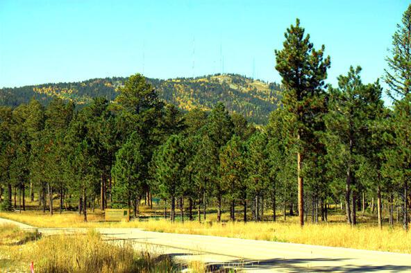 Lot 5, Powder House Trail, Lead, SD 57754 Photo 20