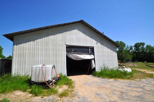445 County Rd. 1301, Cullman, AL 35058 Photo 7