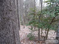 Home for sale: Lot 13 Westwood Dr., Sparta, NC 28675