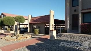 2085 Mesquite Ave. #47, Lake Havasu City, AZ 86403 Photo 1