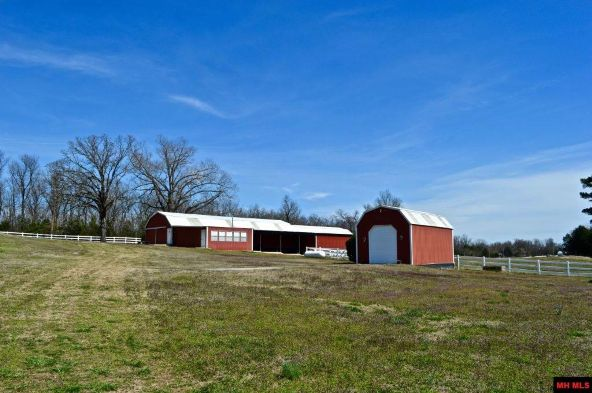 7493 Hwy. 201 South, Mountain Home, AR 72653 Photo 13