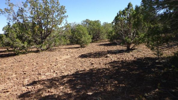 514 Westwood Ranch Lot 514, Seligman, AZ 86337 Photo 8