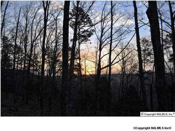 9 South Bluff Trail, Huntsville, AL 35803 Photo 1