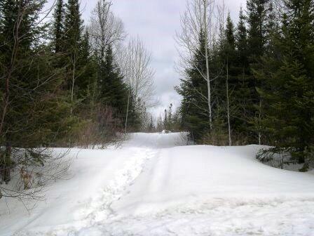 Gunflint Trail, Grand Marais, MN 55604 Photo 14