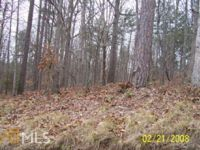 Home for sale: 0 Cherokee Mohawk Cir., Lavonia, GA 30553