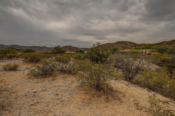 14228 S. Canyon Dr., Phoenix, AZ 85048 Photo 3