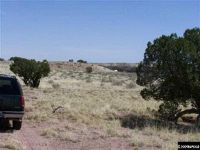 Home for sale: Lot 14 County Rd. 9177, Concho, AZ 85924