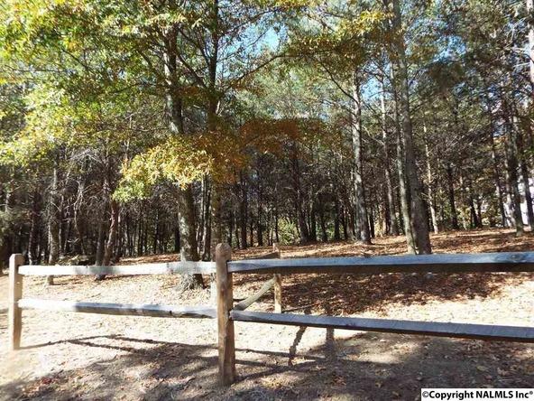 11 S. County Rd. 89, Mentone, AL 35984 Photo 23