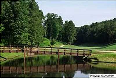 36 Augusta Rd., Guntersville, AL 35976 Photo 4