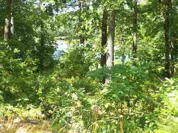 703 Leewood Dr., Horseshoe Bend, AR 72512 Photo 1